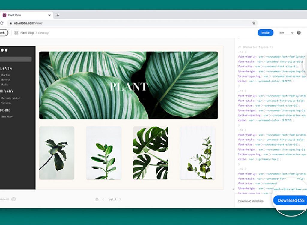 Adobe XD : nouvelles fonctionnalités pour faciliter la vie des designers